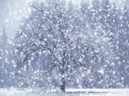 Wash me, and I shall be whiter than snow.  Psalm 51:7