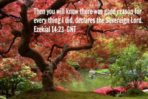 Ezekial 1423