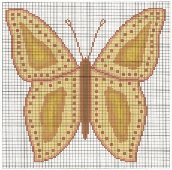 butterfly-10001