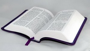 bible-216962__180